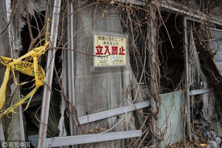 Netizens urge Japan to handle 41 cracks in grounds of Fukushima nuclear plant