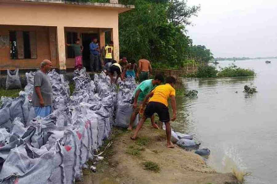 Erosion puts Sherpur primary school under risk