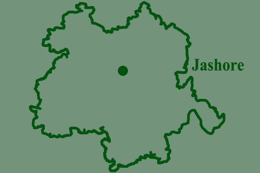 Aman fields battered by pest attack in Jashore