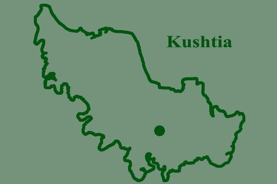 Police arrest 25 female Jamaat activists in Kushtia