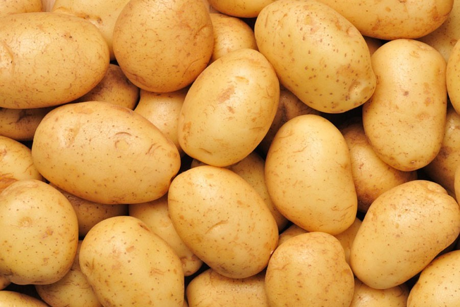 DAE sets target of producing 115,920 tonnes of potato in Jamalpur