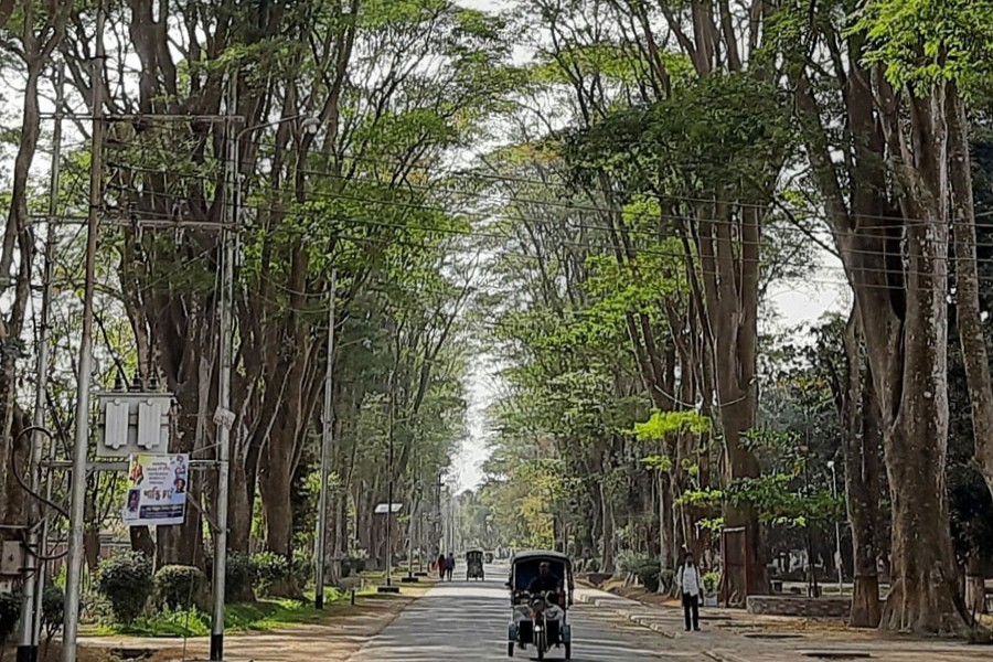 A partial view of the 'Paris Road' on Rajshahi University campus — FE Photo