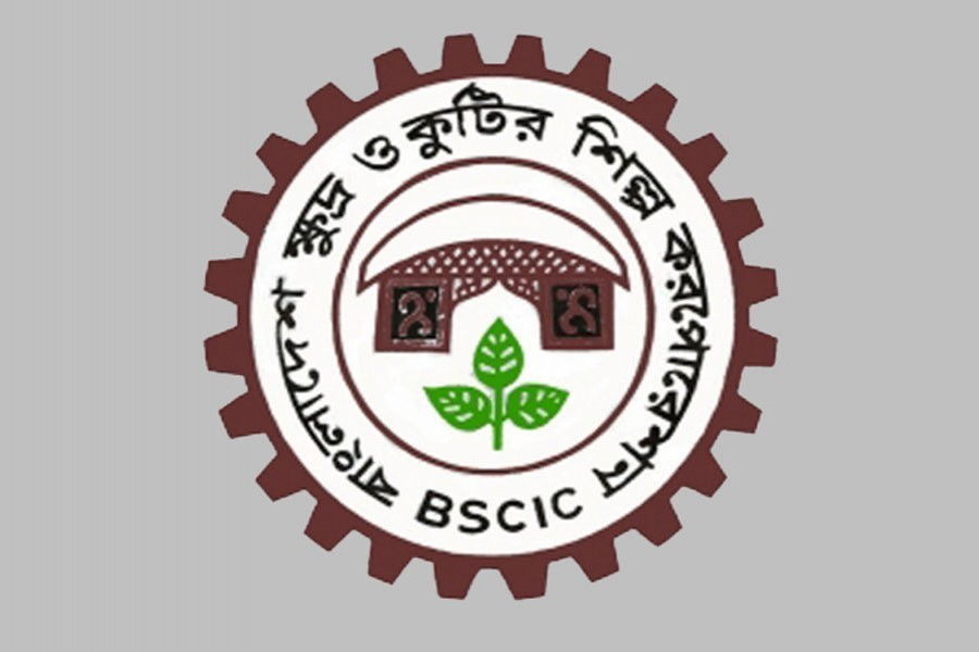 BSCIC to introduce one-stop services