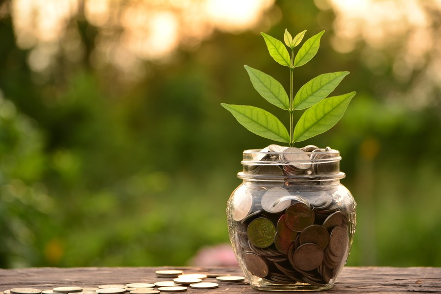 Sustainable finance for green recovery