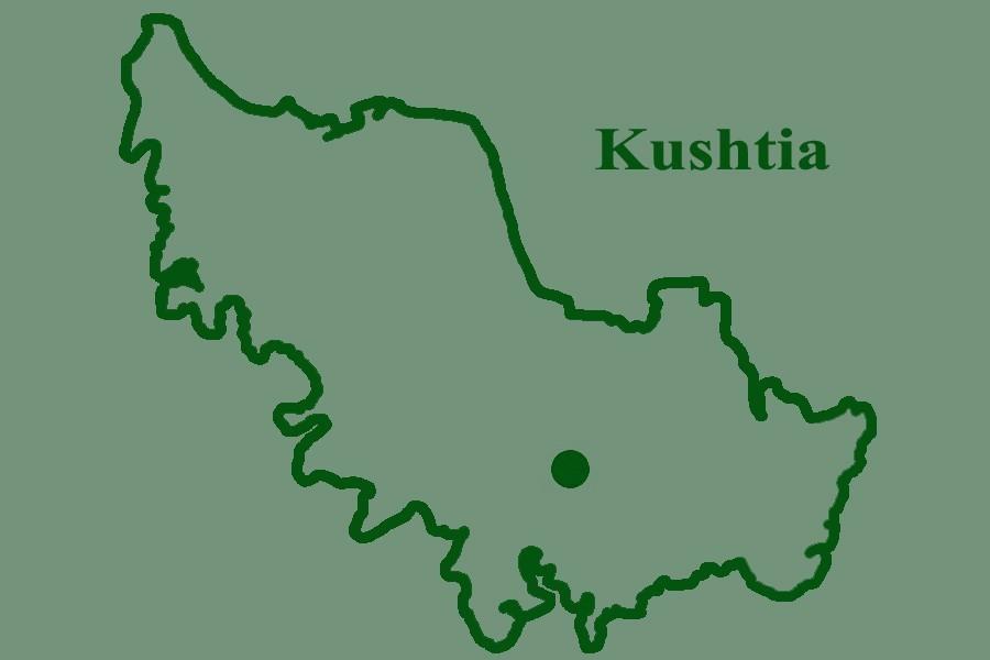 Child 'kills self' for Eid dress in Kushtia