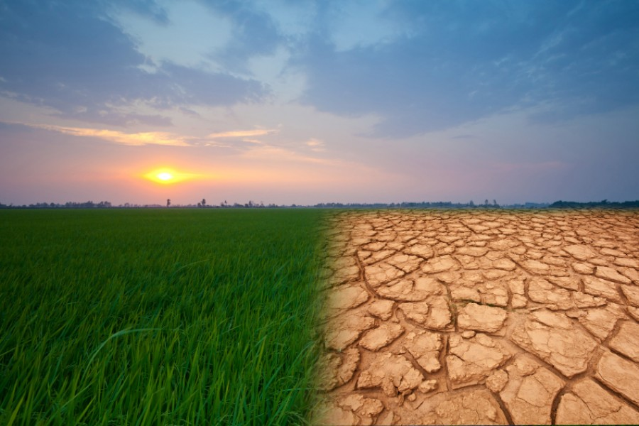 We are staring at a 'decisive decade' to tackle climate change