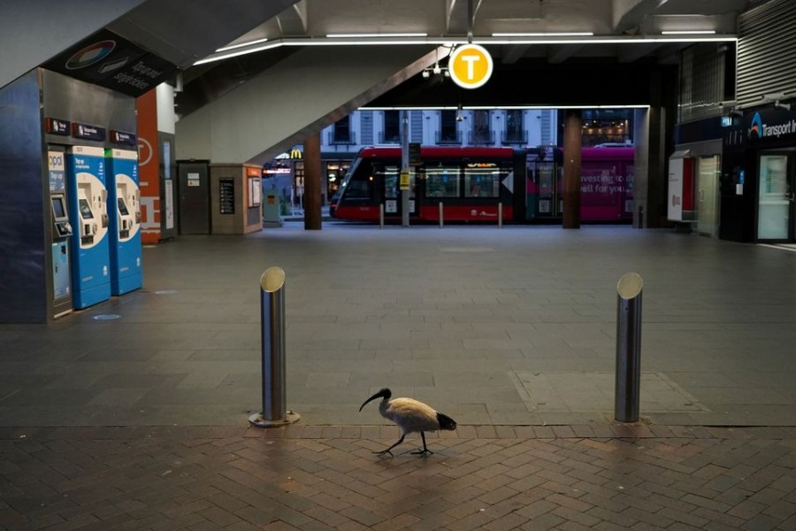 A lone bird walks past the quiet Circular Quay train station during a lockdown to curb the spread of a coronavirus disease (Covid-19) outbreak in Sydney, Australia on July 28, 2021 — Reuters photo