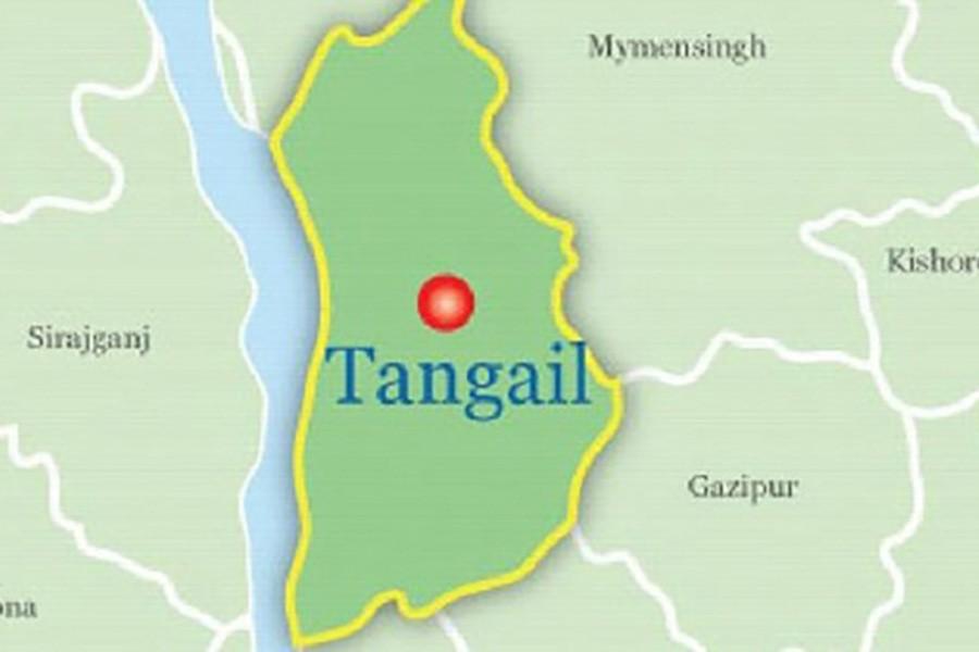 Covered van driver dies in Tangail road crash