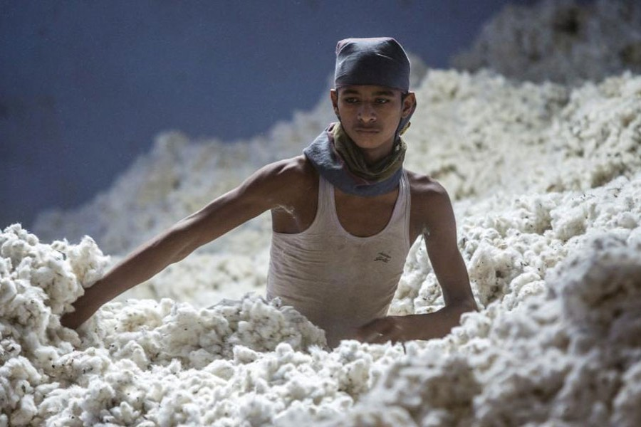 Rising cotton import likely conduit for money laundering