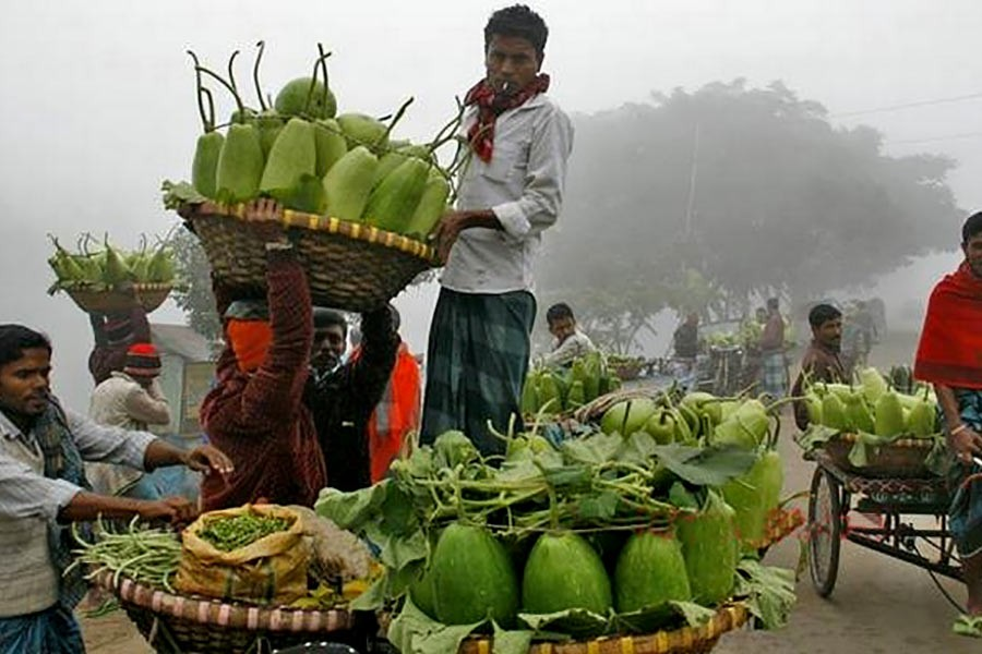 'Low' vegetable output yet to meet consumer requirements