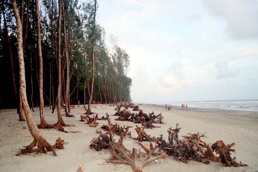 Cox's Bazar environment under threat