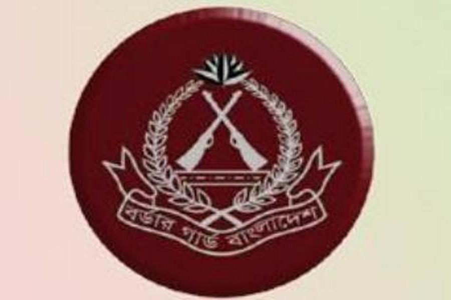 BGB seizes 52kg hemp in Brahmanbaria