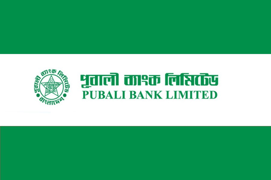 Pubali Bank sees moderate growth
