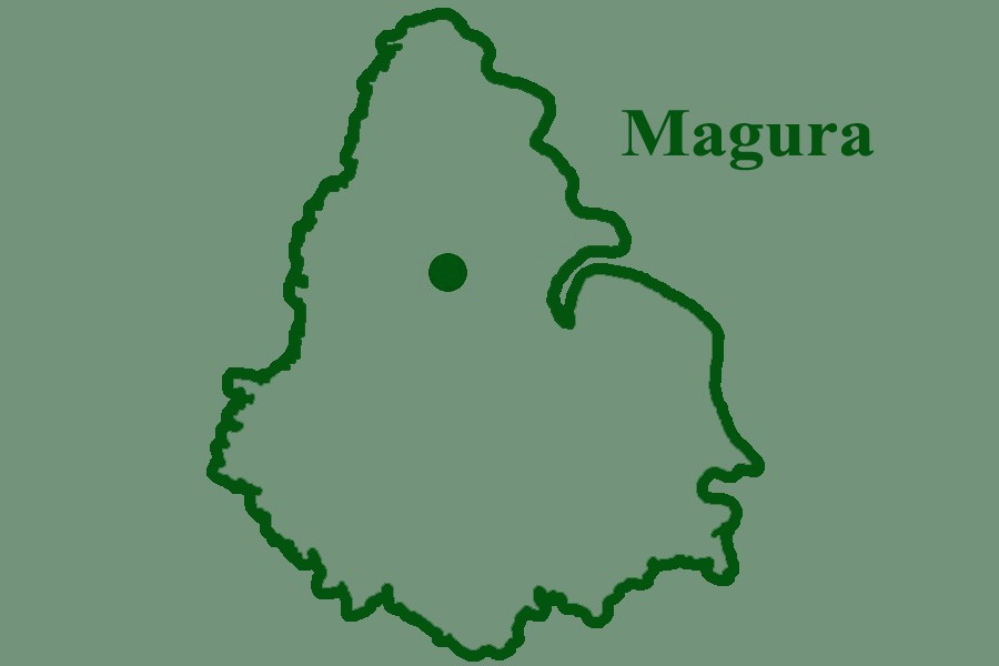 Farmer dies from electrocution in Magura
