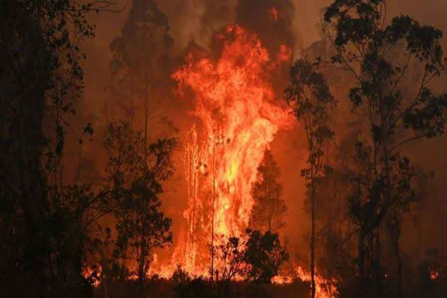 Australia bushfires kill three, force thousands from homes