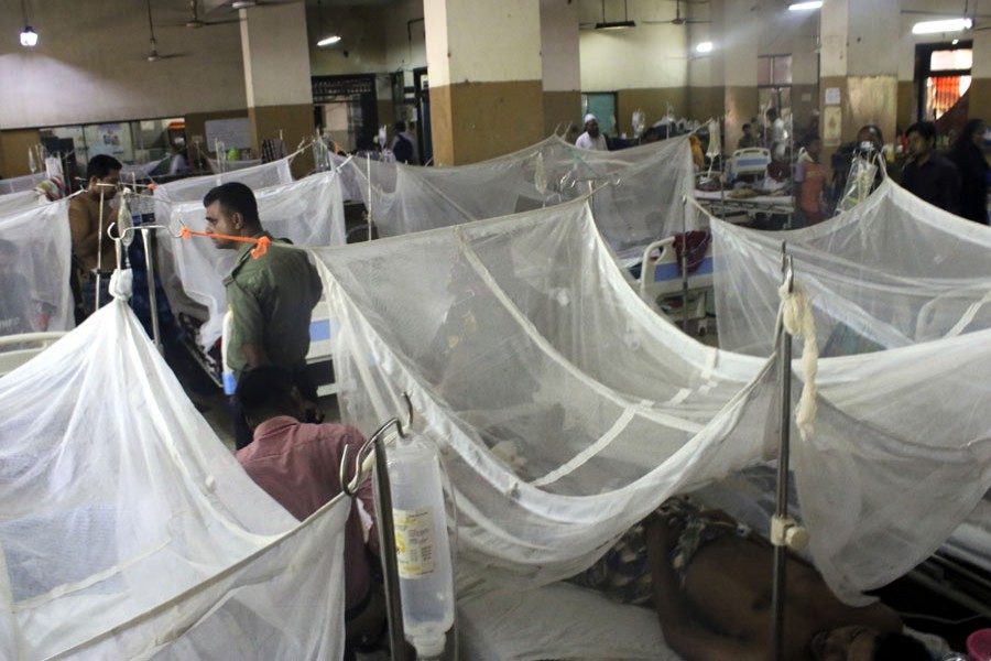 97 new dengue patients hospitalised in 24 hours
