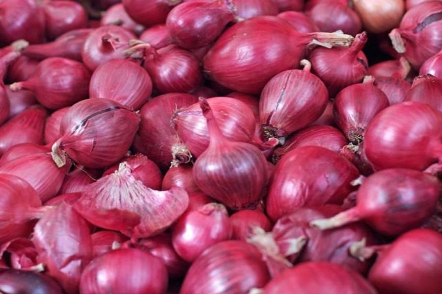 First consignment of Egyptian onion arrives Tuesday
