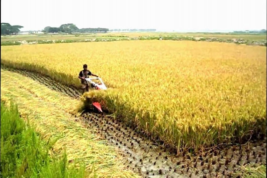 Evolution of Bangladesh's agriculture policies