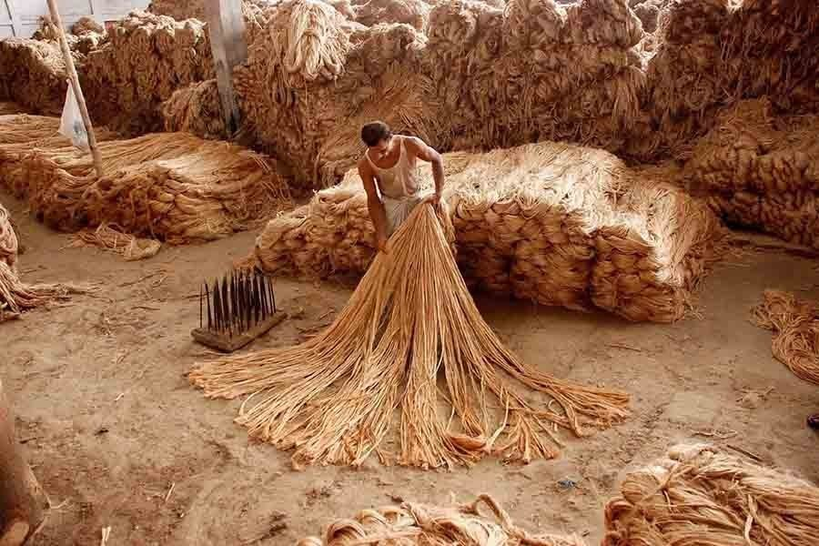 Ensuring availability of raw jute to jute mills