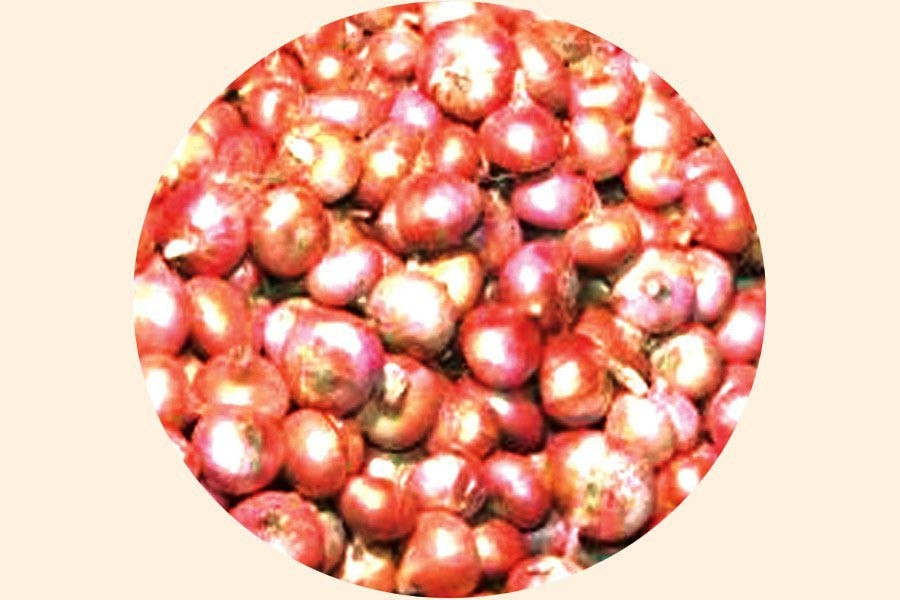 Imported onion reaches Chattogram port