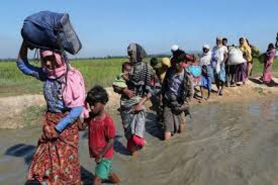 'Recognise crimes against Rohingya as genocide'