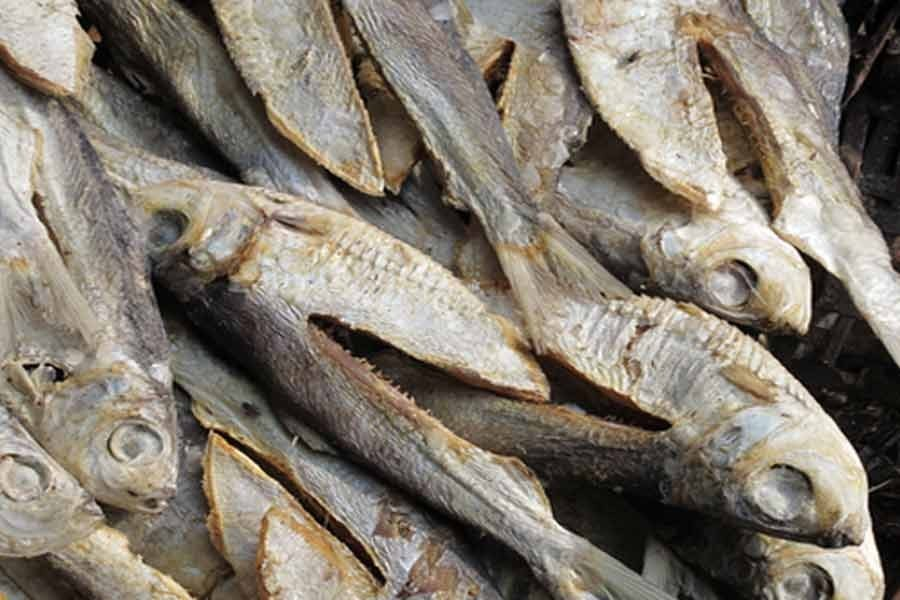Tapping dry fish potential