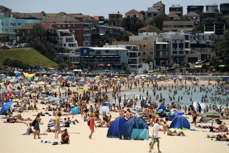 Sydney records hottest November night