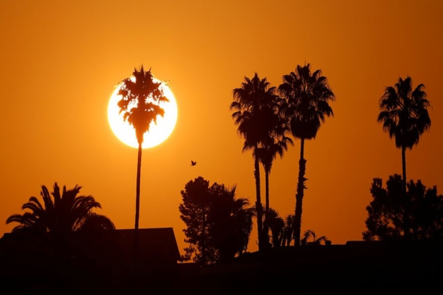 The morning sun rises over a neighbourhood as a heatwave continues during the outbreak of the coronavirus disease (COVID-19) in Encinitas, California, US, August 19, 2020. Reuters