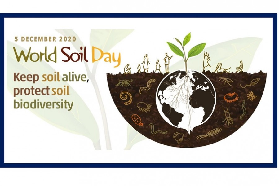 Emphasis on soil biodiversity for future food security