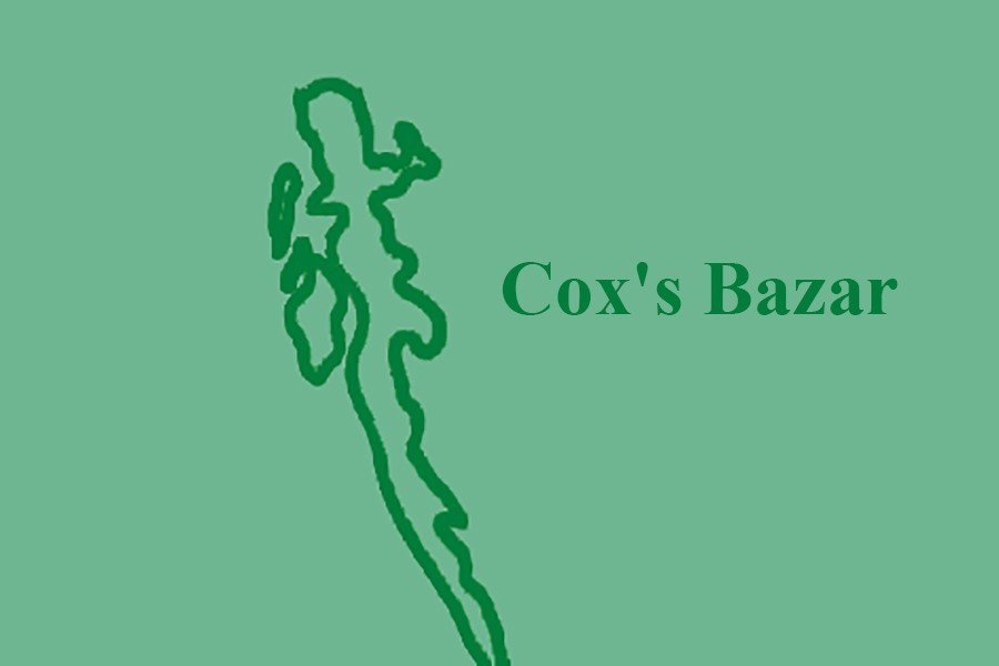 Elephant dies after falling off cliff in Cox's Bazar