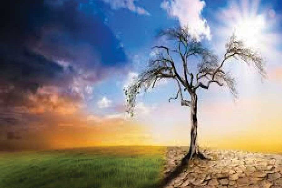 Fighting climate change for peaceful coexistence in prosperity