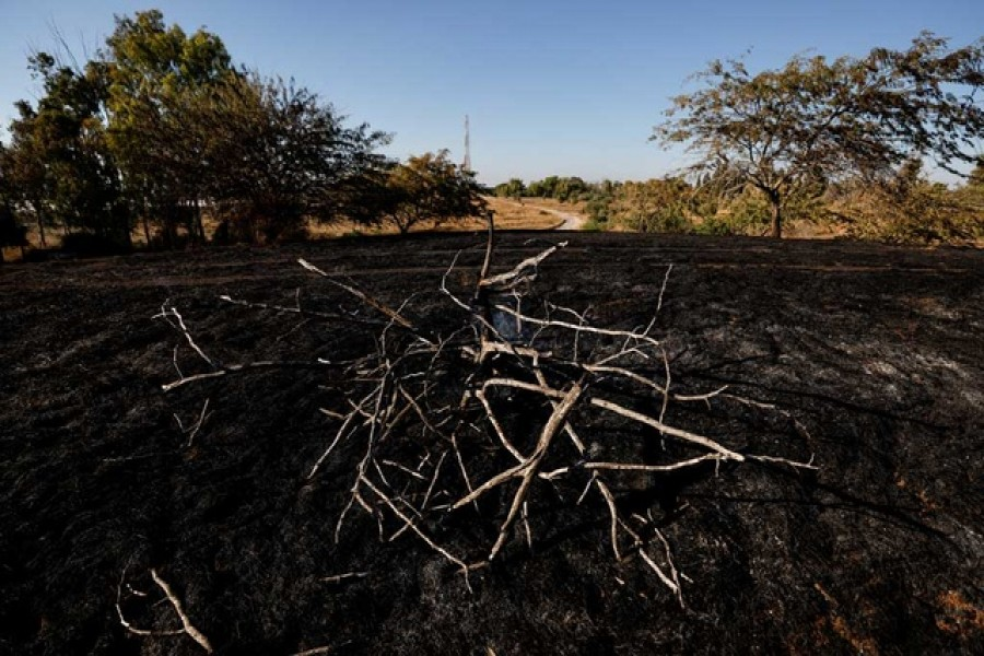 A burned field is seen after Palestinians in Gaza sent incendiary balloons over the border between Gaza and Israel, Near Nir Am June 15,2021. REUTERS/Amir Cohen