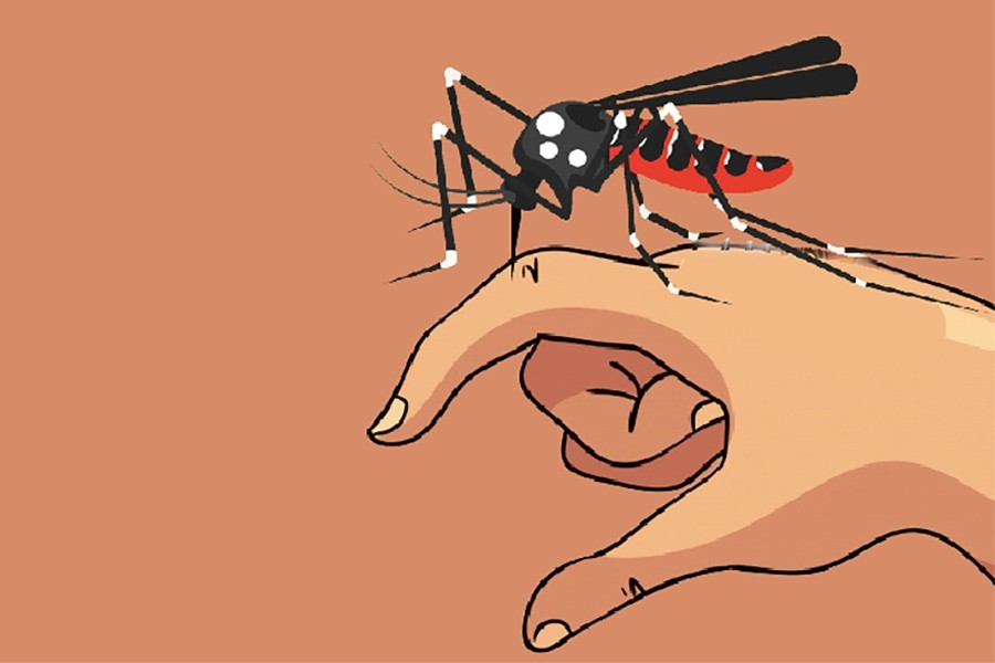 Alarming surge in dengue cases as 196 more hospitalised