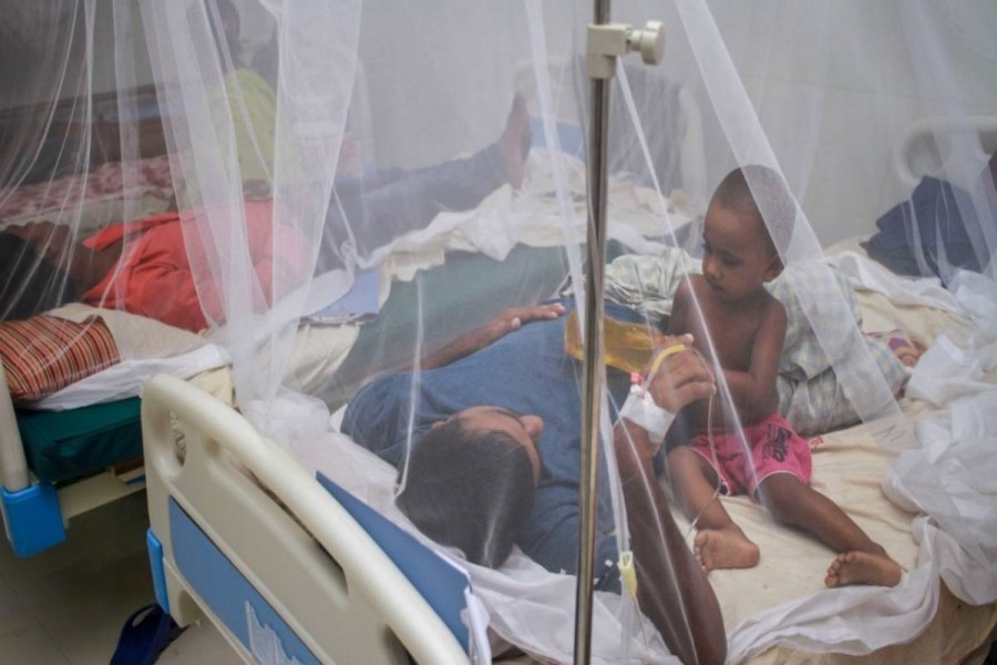 237 patients hospitalised as dengue situation worsens further